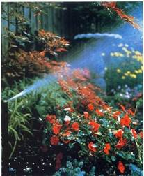Irrigation Experts Balsam Lake Wisconsin