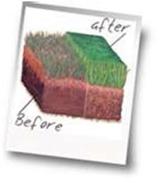 Lawn fertilizing services Balsam Lake Wisconsin